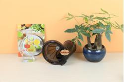 Nắp trống máy ép trái cây Kuvings Hàn quốc