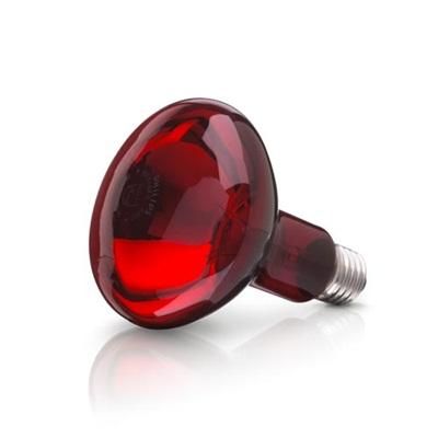 Bóng đèn hồng ngoại trị liệu Philips công suất 100W